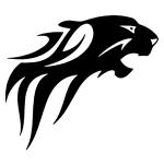 nonfiguratív tigris autómatrica kép