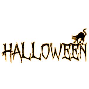 Halloween - fekete macska 04 matrica kép