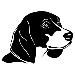 Beagle 004 matrica kép