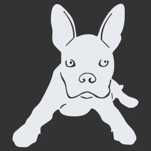 Boston terrier 08 matrica kép