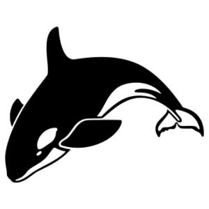 Delfin 02 matrica kép