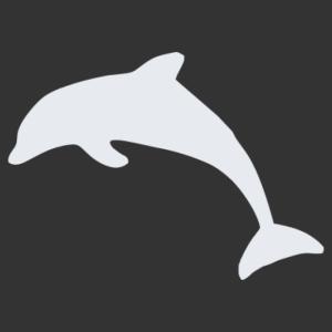 Delfin 06 matrica kép