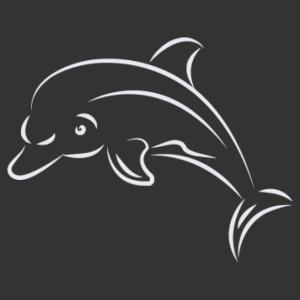 Delfin 11 matrica kép