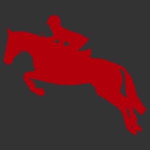 Díjugrató lovas matrica kép