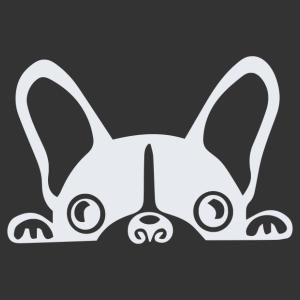 Francia bulldog autómatrica kép