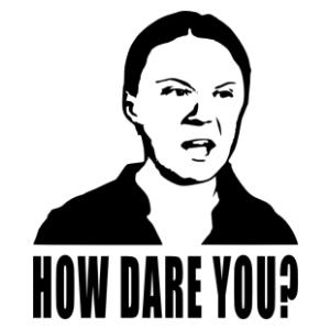 Greta Thunberg - How dare you vicces autómatrica kép