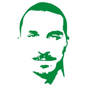 Ibrahimovic matrica kép