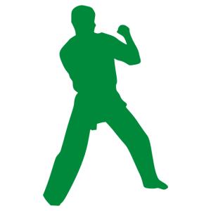 Judo 003 matrica kép