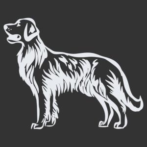 Labrador 006 matrica kép
