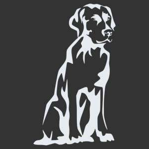Labrador 007 matrica kép