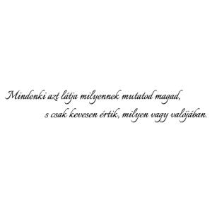 Niccolo Machiavelli - Mindenki azt látja... matrica magyar nyelvű kép