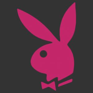 Playboy nyuszifigurás autómatrica kép