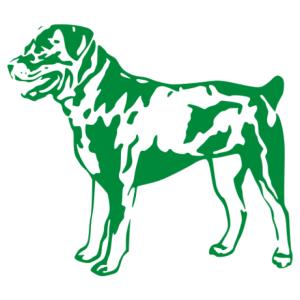 Rottweiler 004 matrica kép
