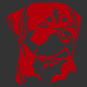 Rottweiler 006 matrica kép