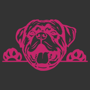 Rottweiler 007 matrica kép