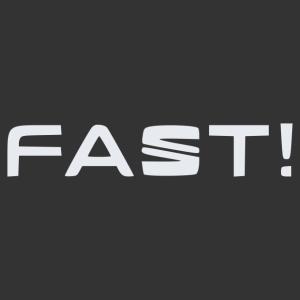 Seat fast matrica kép